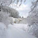 poza-desktop-iarna_f490e393b8f865