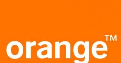 orange young