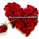 declaratie-de-dragoste- dragobete 2014 urari