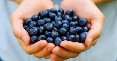 fructele-acai-berry-ajuta-la-slabire